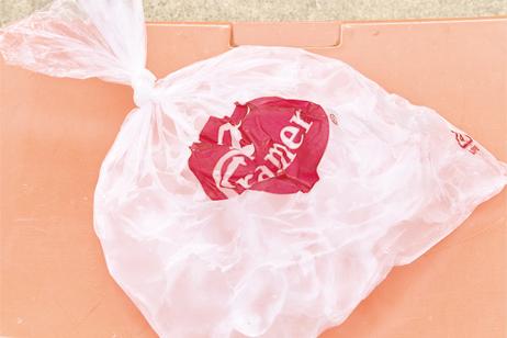 icebag2