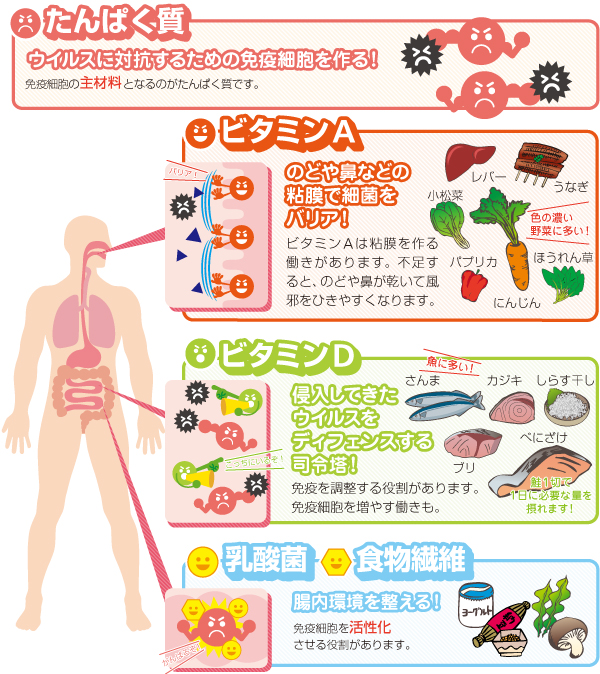 高める 免疫 食事 力
