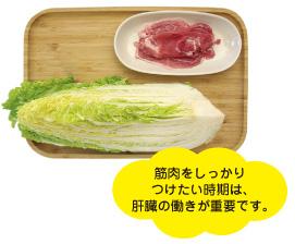 白菜×豚肉